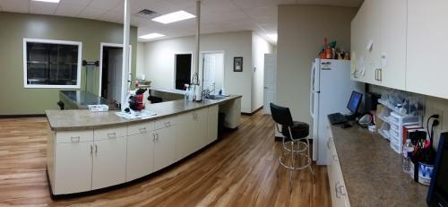 Treatment-Area